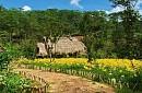 Tour Khám Phá Làng Cù Lần - Cao Nguyên Langbiang