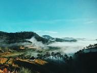 Thăm homestay The Wilder-nest đẹp tựa tiên cảnh bồng bềnh trên mây