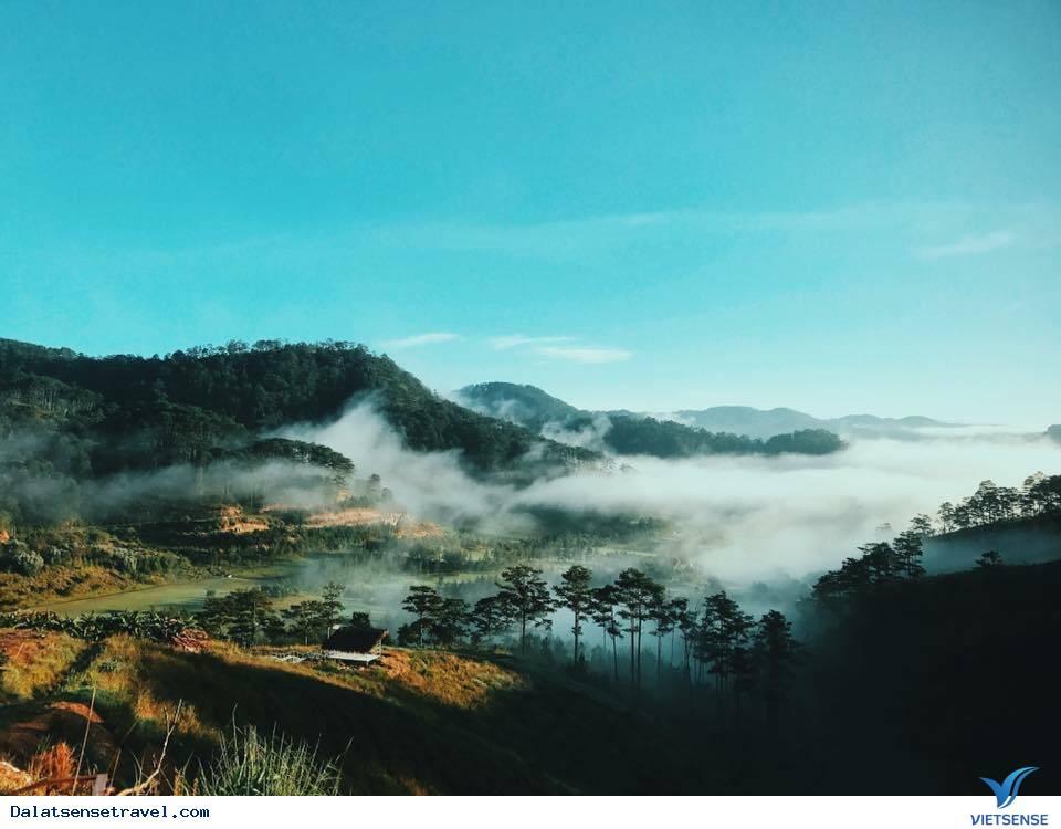 Thăm homestay Đà Lạt đẹp tựa tiên cảnh bồng bềnh trên mây