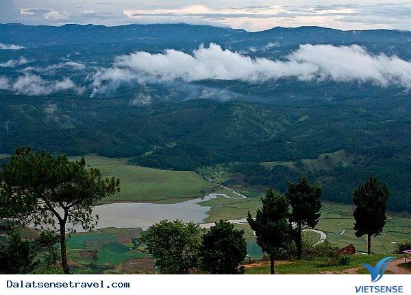 Tỉnh Lâm Đồng Thành Lập Khu Dự Trữ Sinh Quyển Langbiang
