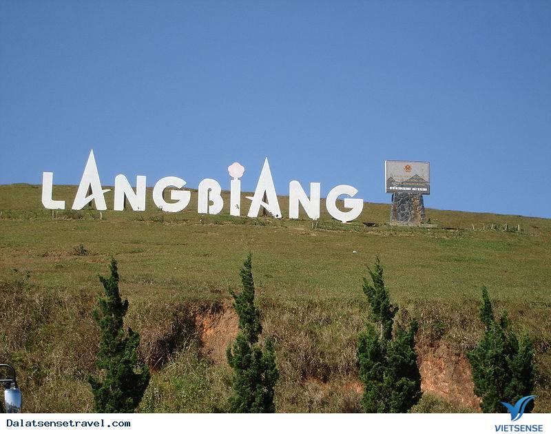 Tour Đà Lạt 3 Ngày 2 Đêm: Hà Nội - Đà Lạt - Thung Lũng Vàng - Núi Langbiang