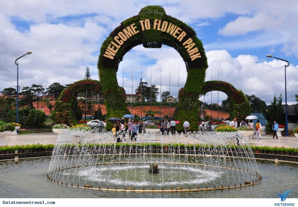 Tour Du Lịch Đà Lạt 4 Ngày 3 Đêm: Khám Phá Đà Lạt Khởi Hành Từ Hà Nội