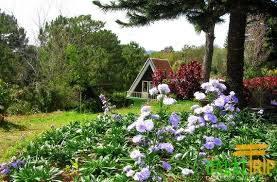 Vườn Hoa Minh Tâm,vuon hoa minh tam